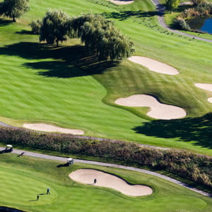 Niagara_Golf_Services